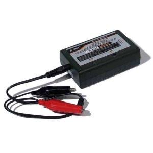 E-SKY Balance charger